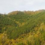 the mountains, los montes