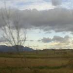 paisaje con arbol, view with a tree