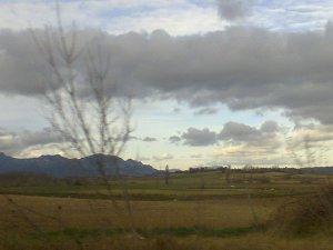 paisaje con arbol